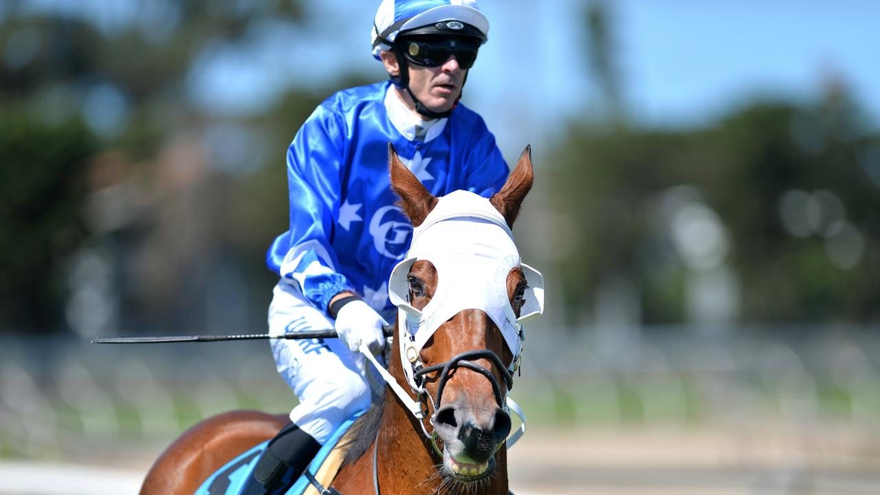 Jockey Justin Stanley, a regular rider at Rockhampton's Callaghan Park, pictured here with Static Lift, won the 2019 Capricornia Yearling Sale aboard the Ben Currie trained Good Humour.