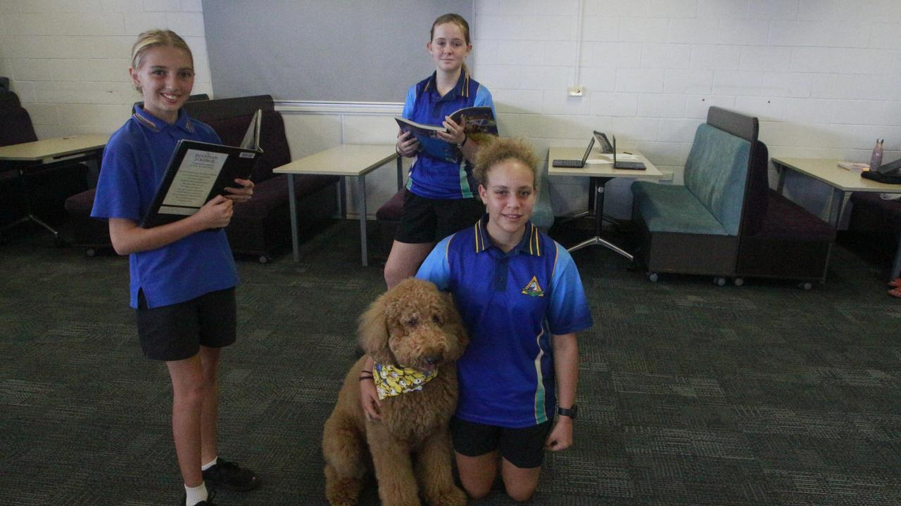 Hervey Bay State High School students Deena Budby, Anastasia Soich and Alana Barry were keeping their social distancing and while studying and enjoying the company of Ted the Groodle Pet Therapy Dog.