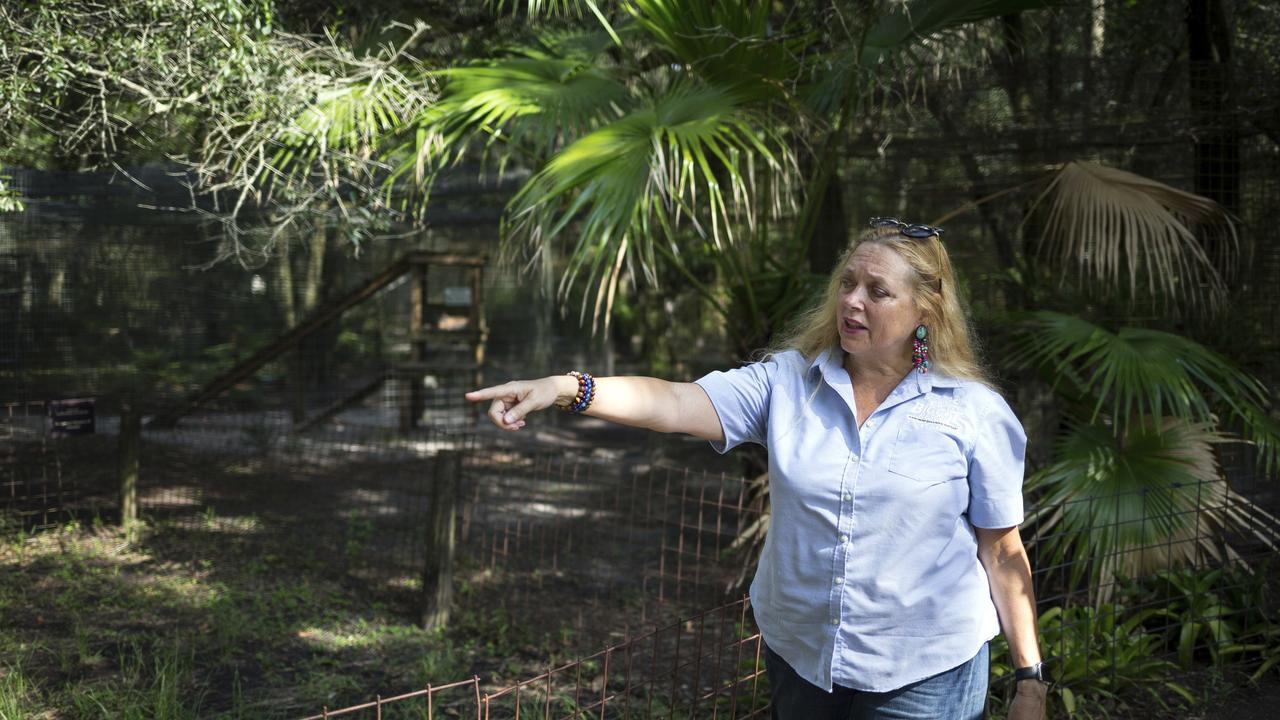 Carole Baskin, founder of Big Cat Rescue. Picture: Loren Elliott/Tampa Bay Times via AP