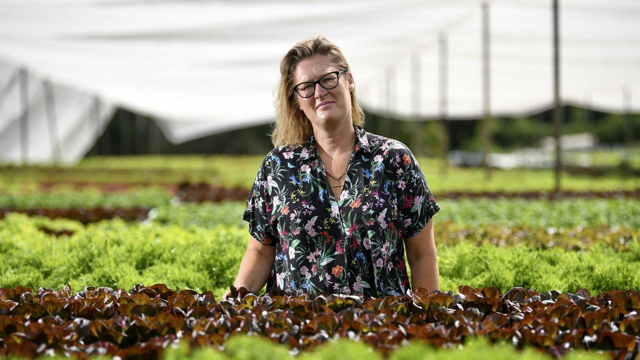 Salads at Palmwoods owner Marnee Stinton has started selling produce direct to the public. PHOTO: Warren Lynam