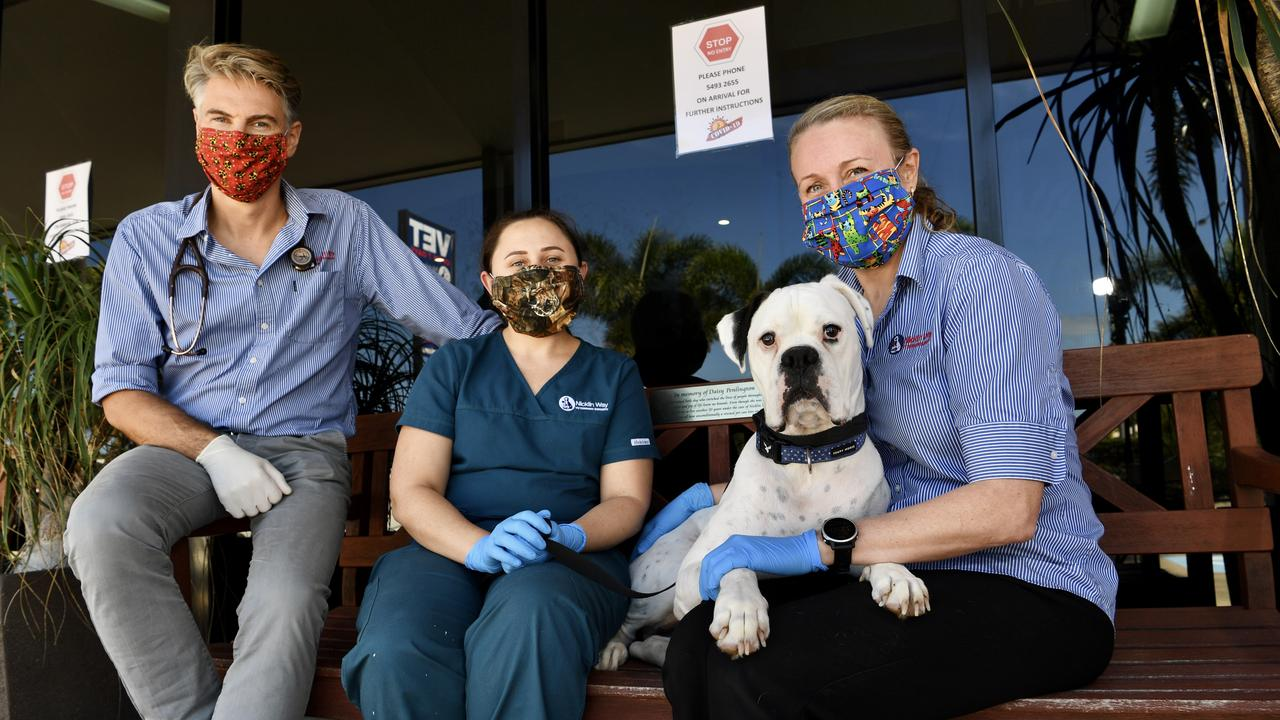 ESSENTIAL SERVICE: Nicklin Way Vet Surgery is still open for business and staff members Doug Gray, Keira Potter and Melanie Irvine say the health and safety of their customers and their pets like Floyd, is of utmost importance. Photo: Warren Lynam