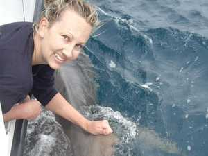 Shark researcher brings expertise to local waters