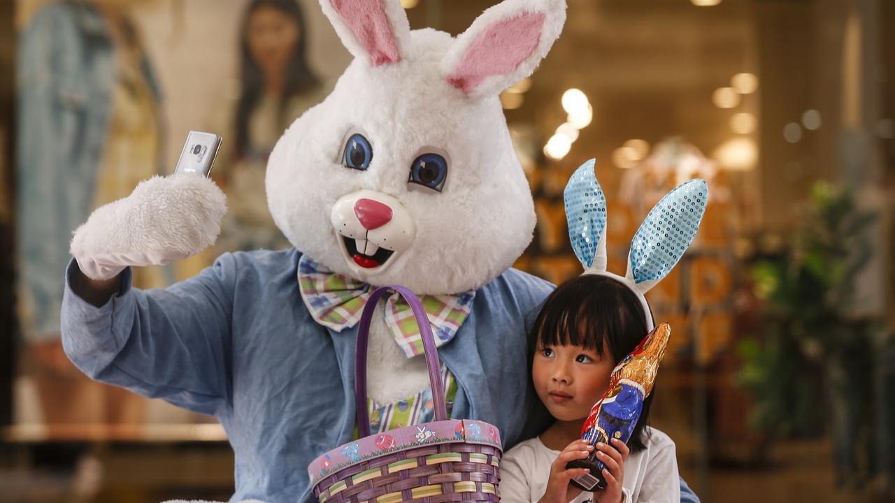 Easter Bunny Keeping One Hop Ahead Of Coronavirus Noosa News