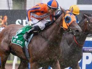 Pizza-loving horse eats up Doncaster