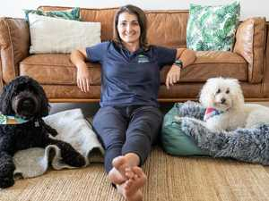 School for dogs zooms into lounge rooms