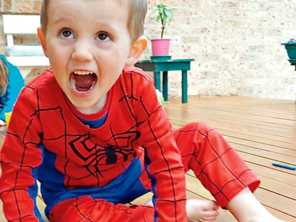 William Tyrrell went missing in Kendall NSW in 2014.