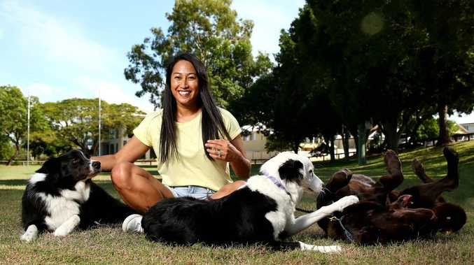 New restrictions as Aussie pet owners panic buy