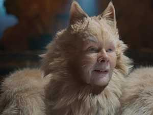Rumour about NSFW Cats movie confirmed