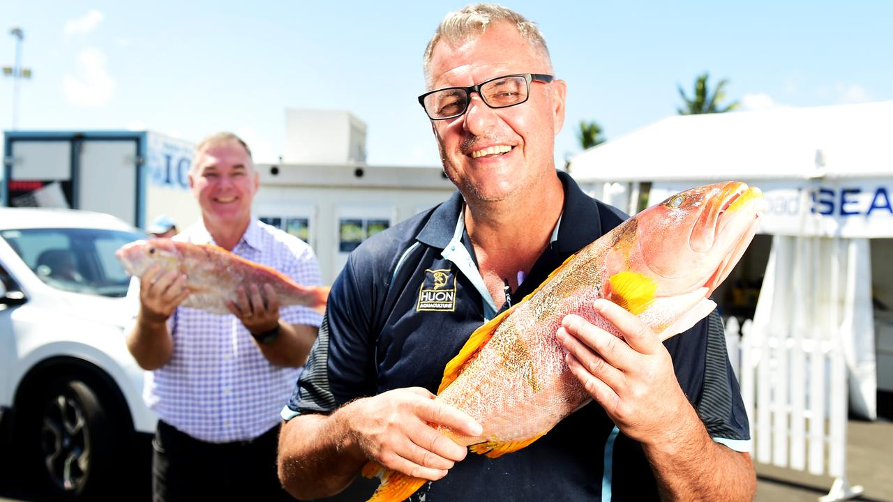 Scott Stewart MP with Mark Partland owner of Ingham Road Seafood with a Coral Trout and a Gold Band Snapper