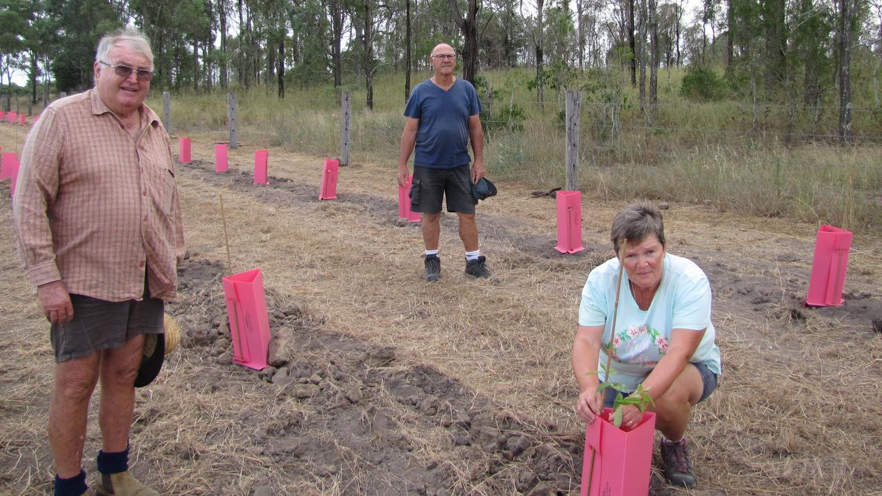 BIG HELP: Lowood Beautification Project co-ordinator Peter Bevan with volunteers John and Sue Cook.