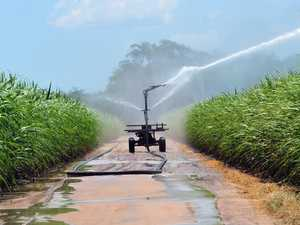 Irrigation price drop could boost sugar output by millions