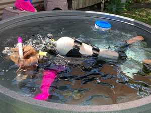 Scuba student gets creative in her own backyard