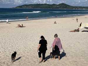 Byron hosts a third of coronavirus cases in Northern NSW
