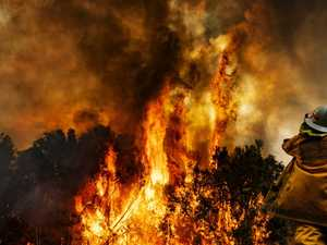 PREPARE NOW: Urgent plea to be bushfire ready
