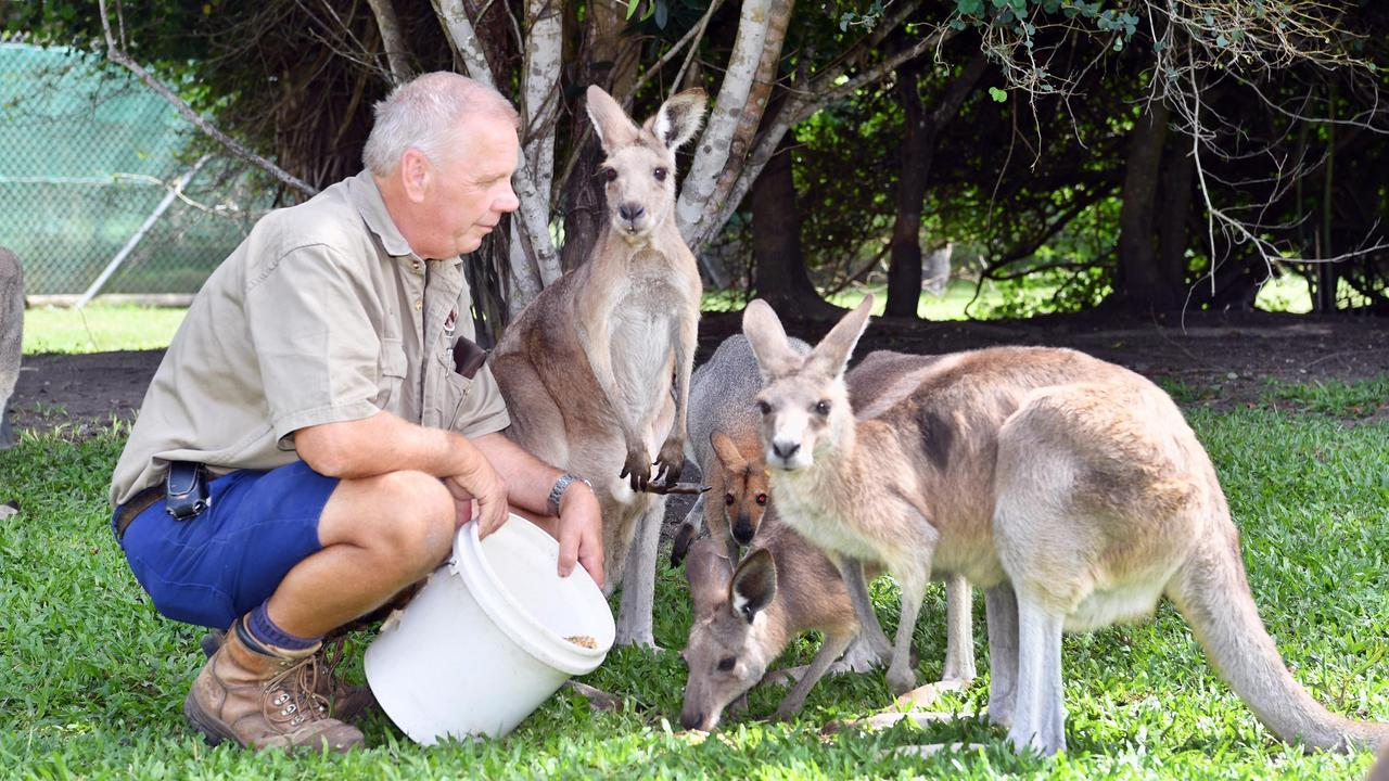 Fraser Coast Wildlife Sanctuary - (L) David Trigg (liason officer & maintenance) with some of the animals in the sanctuary.Photo: Alistair Brightman