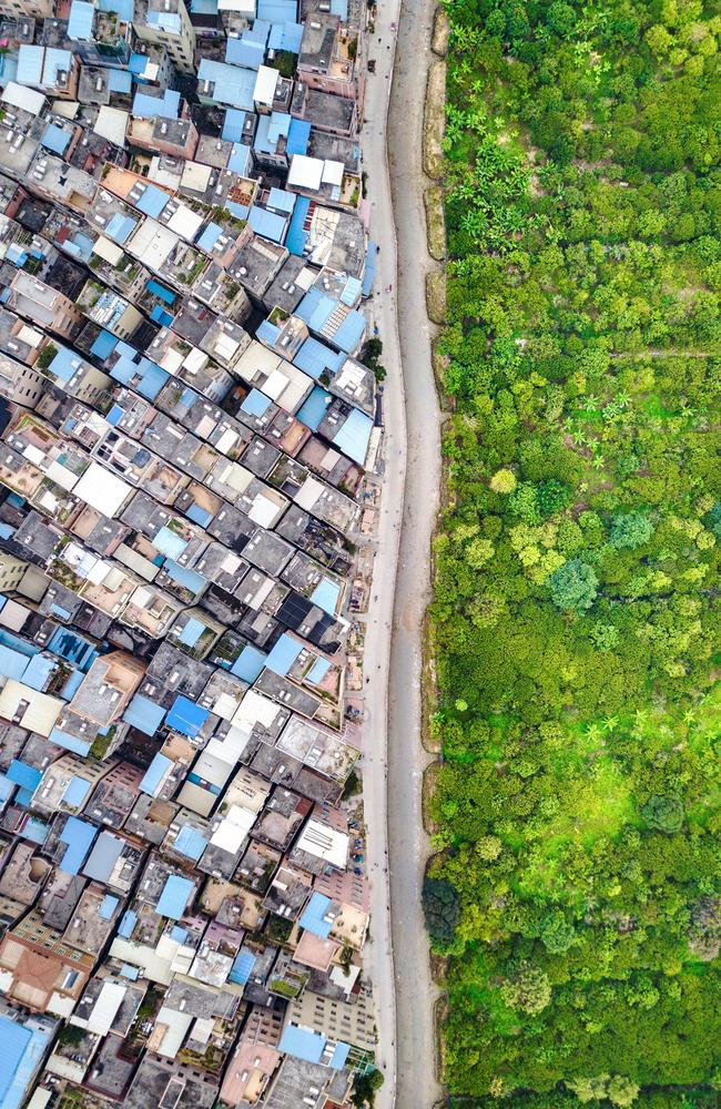 'Line', a clear line separates the crowded village houses and the forest reserve in Guangzhou, China. Picture: Wen Lu/Sony World Photography Awards