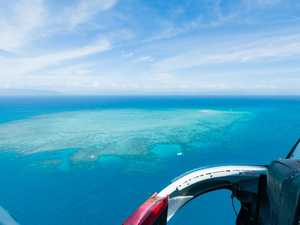 Great Barrier Reef innovation is up in the clouds
