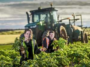 Backpackers in ag facing strict new coronavirus rules