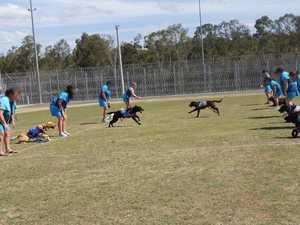 Virtual training program aids prison pups' future