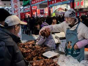 Why diseases thrive in wet markets