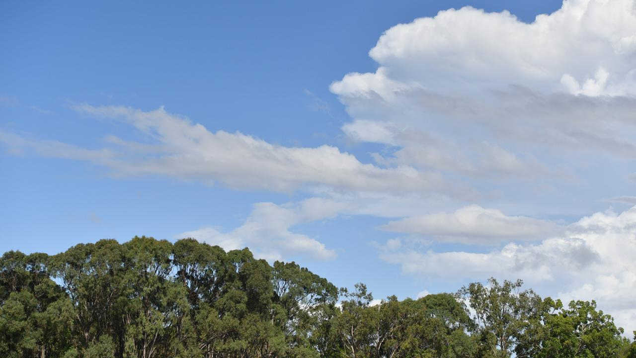 BOM confirms Dalby weather for the week ahead