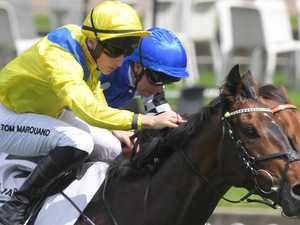 Cup winner to come out swinging on home turf