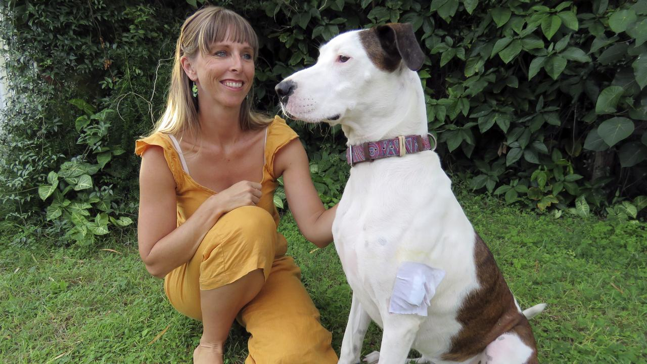 TWICE BITTEN: Davina Warman with her 19-month-old puppy Indi who was attacked by the same dog on Cabarita Beach last week. Ms Warman hopes the owner of the aggressive dog will take responsibility for its actions and muzzle it.   Photo: Jodie Callcott.