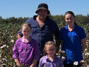 Toogoolawah farmer's plan to build cotton crop production