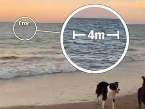 'Monster' 4m croc stalks popular Darwin beach