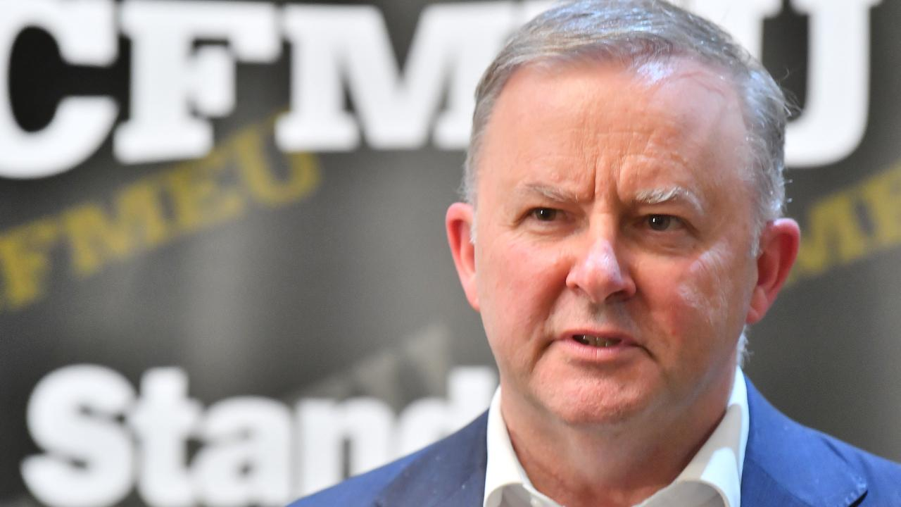 Opposition Leader Anthony Albanese. Picture: Tony martin