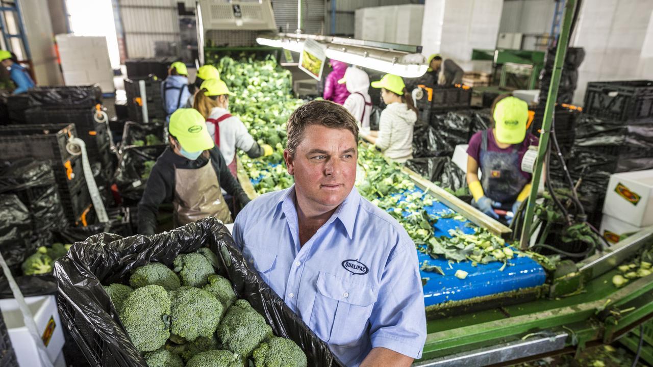 EXPORT PRODUCE: Broccoli farmer Troy Qualischefski at his farm in Gatton. Photo: Photo: File /Glenn Hunt