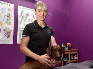 Massage therapist back in demand