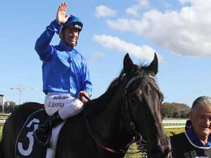 Blue Army invasion: Godolphin sets sights on Queensland