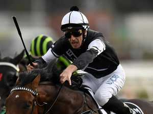 Looker trumps Shelton hope to take big maiden win