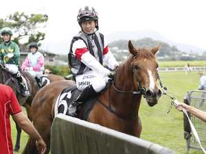 Sawdust scare for promising Ballina horse