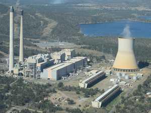 Survey sounds death knell for coal power