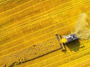 The scientific phenomena that could have big impact on crops