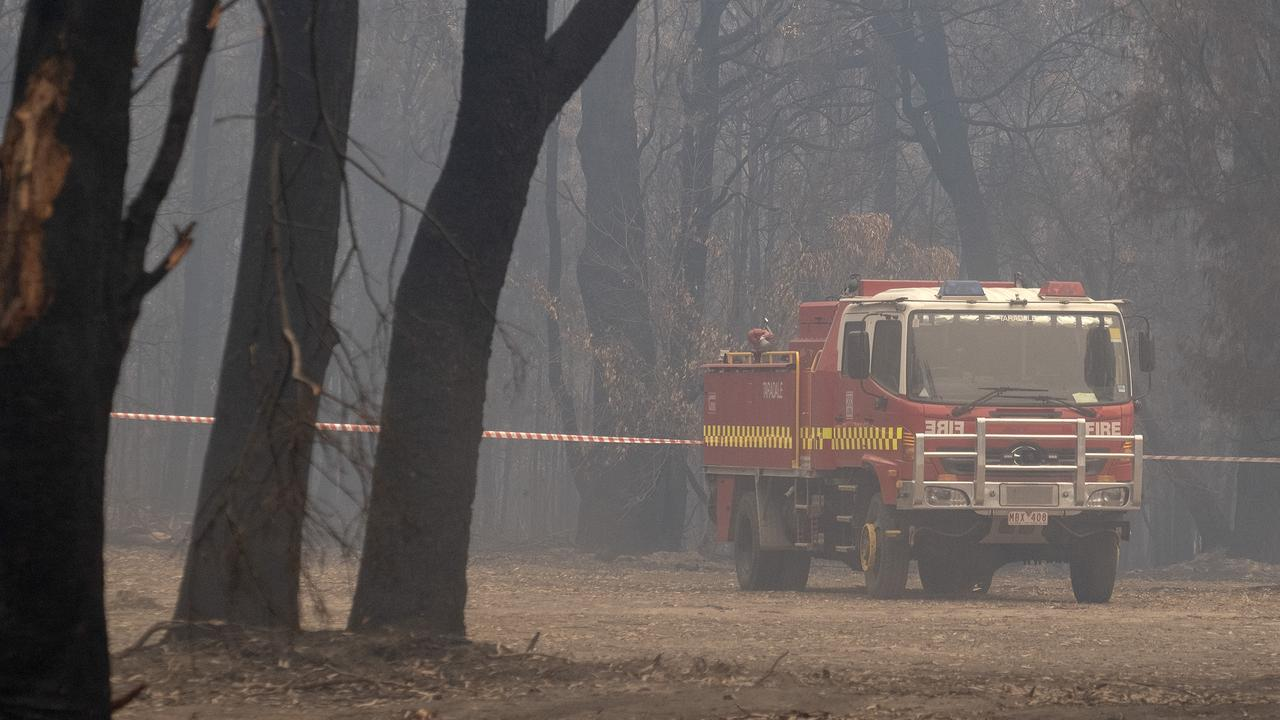 Large tracts of NSW Forests were burnt out in the 2019 bushfires.