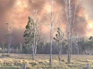 How you can join online bushfire inquiry