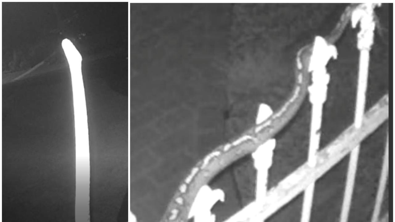 Security cameras at Leigh Galbraith's Coffs Harbour home captured some incredible night time footage.