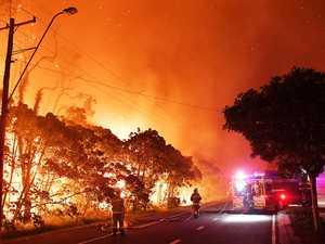 Technology provides hope after horror bushfire season