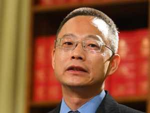 Twiggy's hijacker Long Zhou and China's web 'solution'