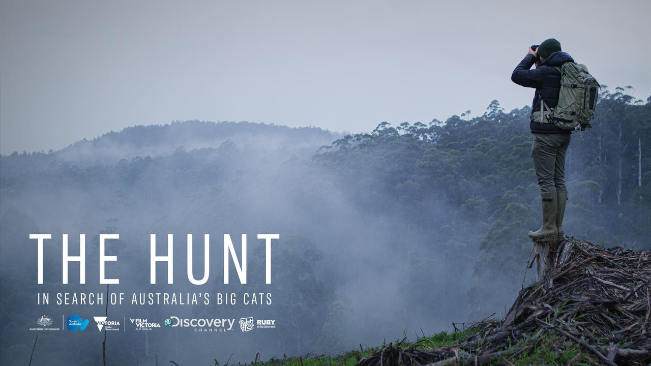 The Hunt: In Search of Australia's Big Cats, is a new documentary airing on Discovery Tuesday 5 May.
