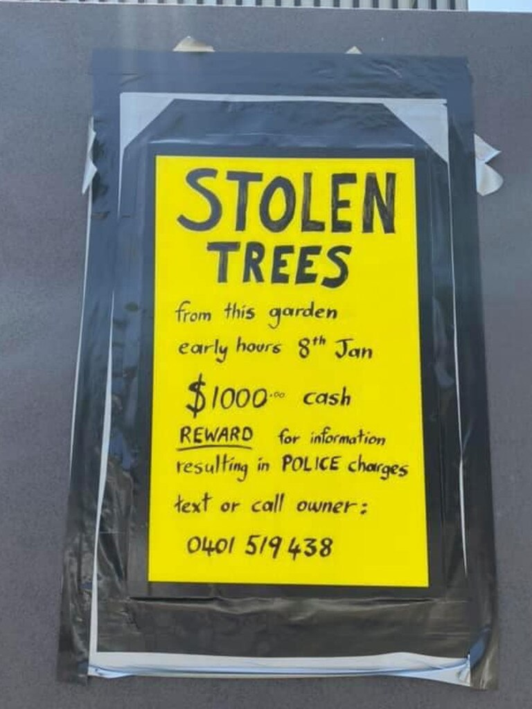 STOLEN: The sign Sean Browne made after his expensive plants were stolen from his front garden.