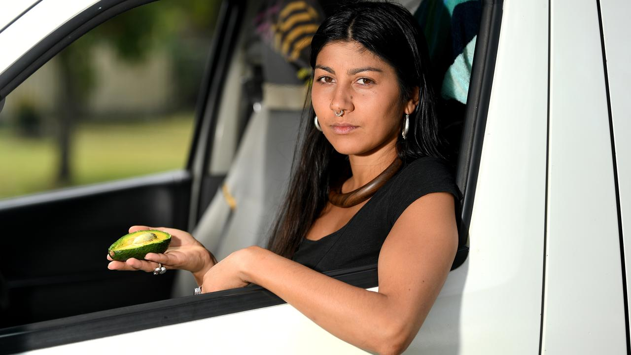 Trimayne Meader was fined more than $500 for throwing an avocado seed out the window into Sunshine Coast bushland. Photo: Warren Lynam