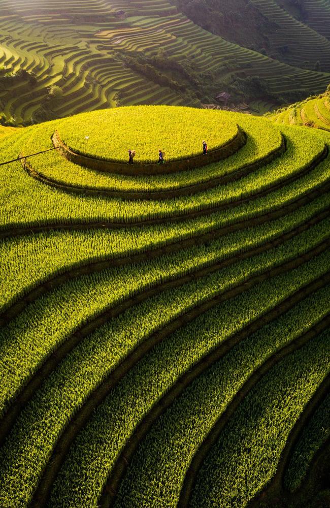 Mu Cang Chai Rice Terraces Mu Cang Chai Rural District Of Yen Bai Province, Northeast Region Of Vietnam.Picture:Thien Nguyen Ngoc  /The EPSON International Pano Awards 2019