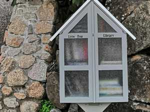Little library in the good books with all ages