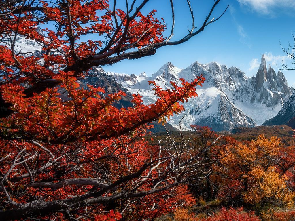 Autumn Colour Of Patagonia, Patagonia, Argentina.Picture:Chantasinee La-Ongsri  /The EPSON International Pano Awards 2019