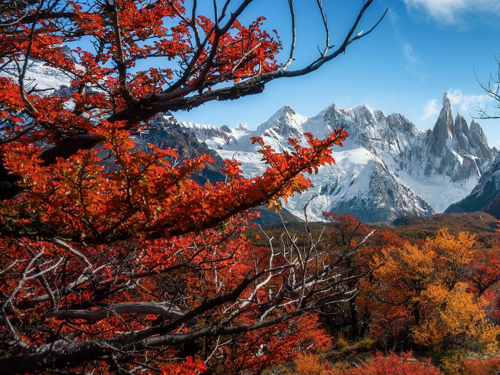 Autumn Colour Of Patagonia, Patagonia, Argentina. Picture: Chantasinee La-Ongsri    /The EPSON International Pano Awards 2019