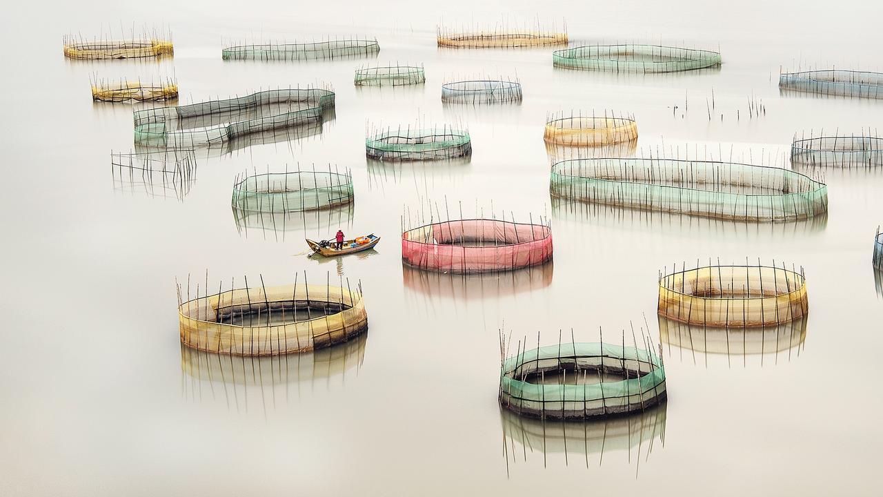 Fishing Nets - Xiapu, Xiapu China. Picture:Ray Jennings /The EPSON International Pano Awards 2019